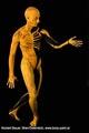 Bodypainting_Skelett_Muskeln_2614.jpg