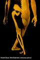 Bodypainting_Skelett_Muskeln_2698.jpg