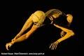 Bodypainting_Skelett_Muskeln_2709.jpg