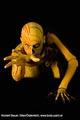 Bodypainting_Skelett_Muskeln_2812.jpg