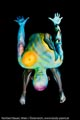 Bodypaint_ScienceFiction_Enterprise_UFO_Welten_53.jpg