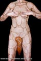 Bodypainting_Doppelskulptur_Paar_Sexy_0448.jpg