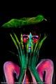 Bodypaint_Orchidee_Blume_Blatt_07049.jpg