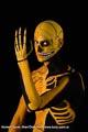 Bodypainting_Skelett_Muskeln_2654.jpg