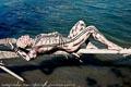 Bodypainting_Txukahamae_Indianer_Brasilien_Tribal_03859.jpg