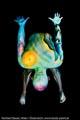 Bodypaint_ScienceFiction_Enterprise_UFO_Welten_53.jpg